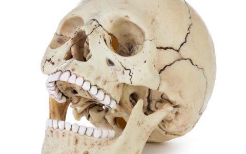 Menschlicher Schädel isoliert auf weißem Hintergrund mit Beschneidungspfad.